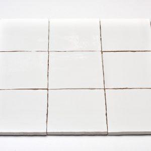 oud hollands handvorm tegel wit